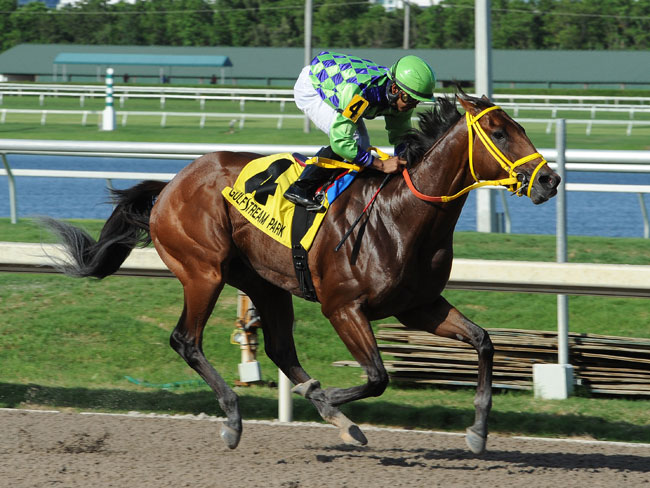 Wildcat Red Possible Lone Speed In Vosburgh
