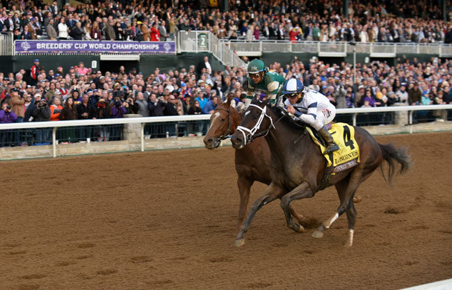 Breeders' Cup Results 2015