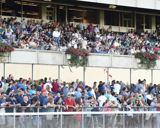 Belmont Park Super Saturday 2015 Picks & Plays