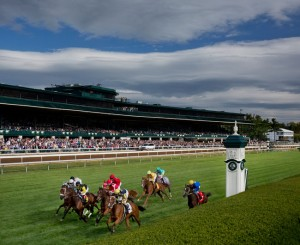 Prelude to the cup Breeders' Cup