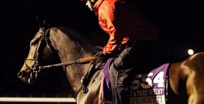 Fioretti Horse