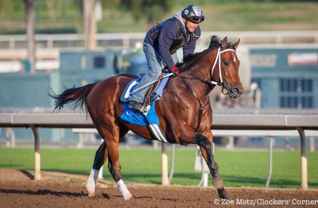Marking Can Upset Runhappy In Malibu Stakes At Santa Anita
