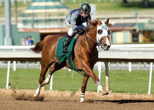 California Chrome San Pasqual