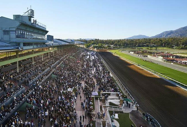Santa Anita Park Picks Amp Plays Saturday Jan 23 2016