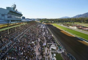 Santa Anita Park Picks and Plays