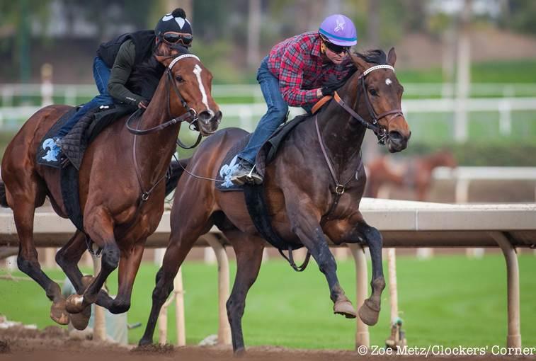 San Vicente Stakes 2016 Debate Reinier Vs Casey Lady