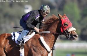 Smokey Image Horse