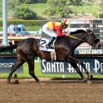 Danzing Candy Horse Kentucky Derby 2016