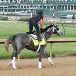Destin Horse Kentucky Derby 2016