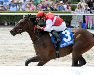 Go Maggie Go Horse