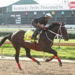 Majesto Horse Kentucky Derby 2016