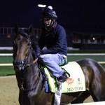 Mo Tom Horse Kentucky Derby 2016
