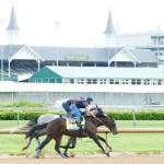 Mor Spirit Horse Kentucky Derby 2016