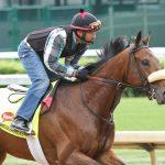 Suddenbreakingnews Horse Kentucky Derby 2016
