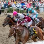 Gun Runner Horse Kentucky Derby 2016