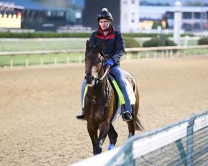 Mo Tom Horse Kentucky Derby