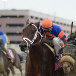 Outwork Horse Kentucky Derby 2016