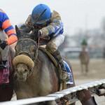 Trojan Nation Horse Kentucky Derby 2016