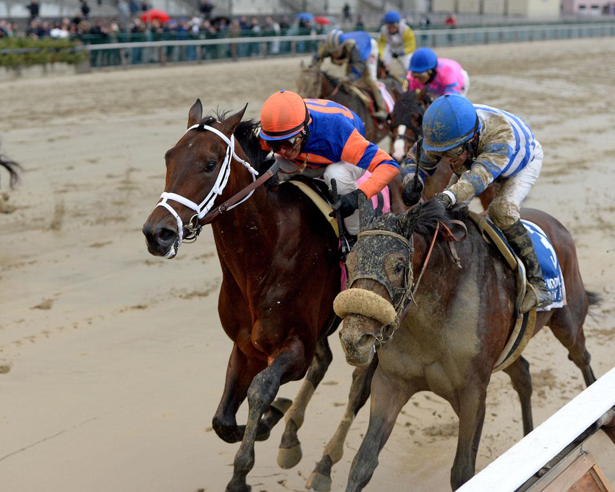 Trojan Nation Seeks First Win In Kentucky Derby 142