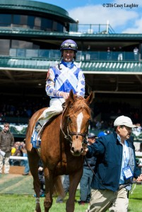 Weep No More Horse Kentucky Derby 2016