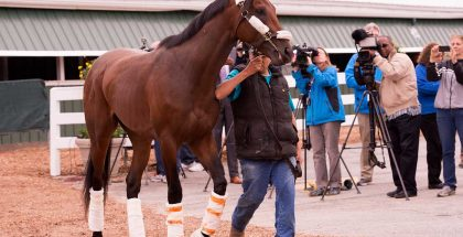 Nyquist Preakness Stakes 2016