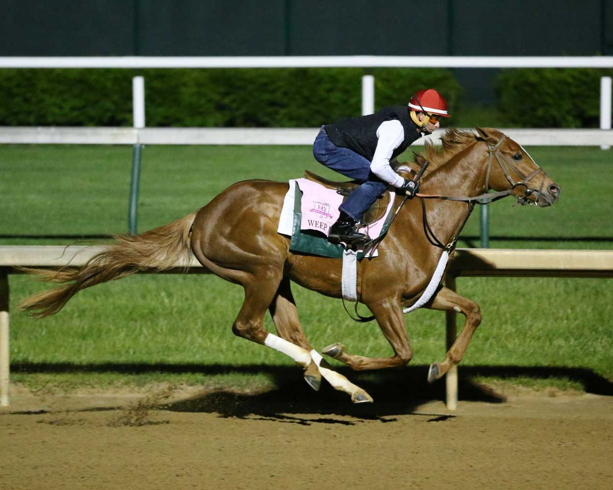 Kentucky Oaks 2016 Odds And Post Positions