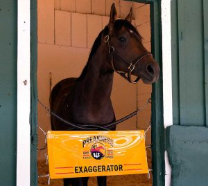 Exaggerator Preakness Stakes 2016