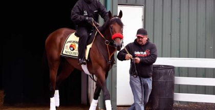 Nyquist Preakness 2016