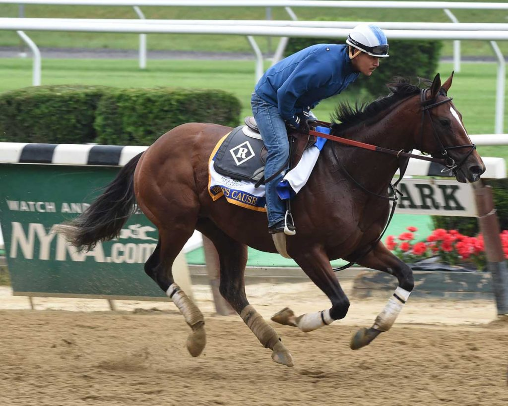 Brody's Cause Belmont Stakes 2016