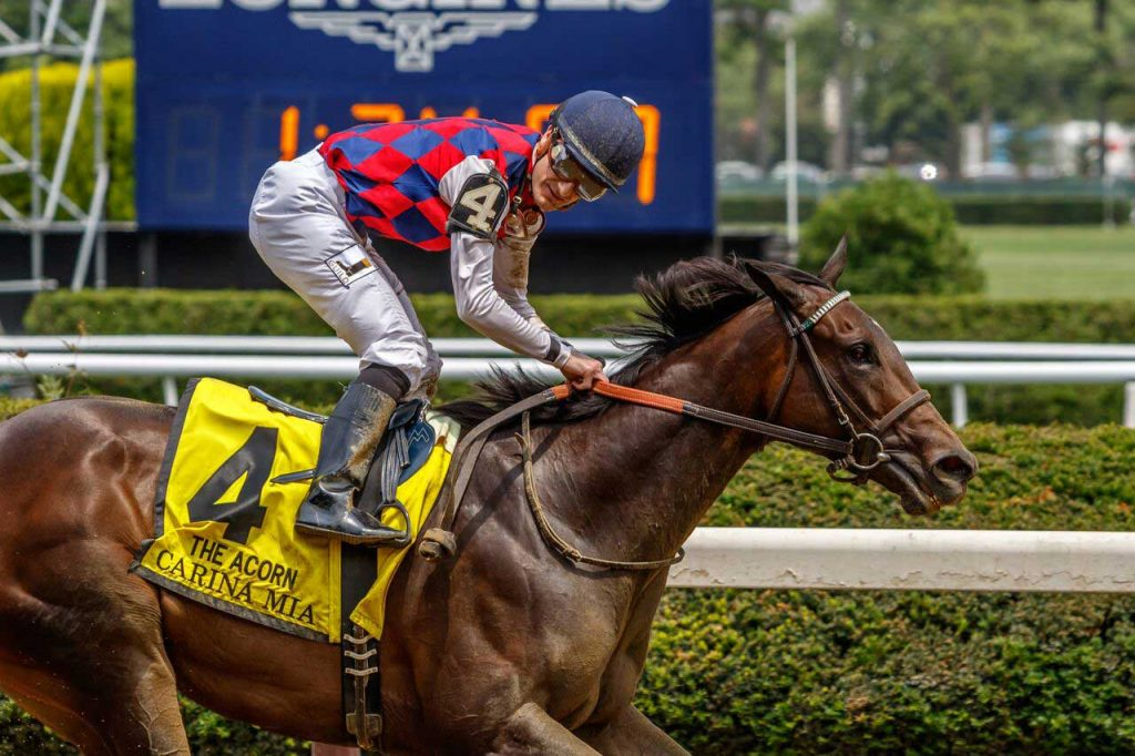 Belmont Stakes 2016 Results, Recaps, Replays