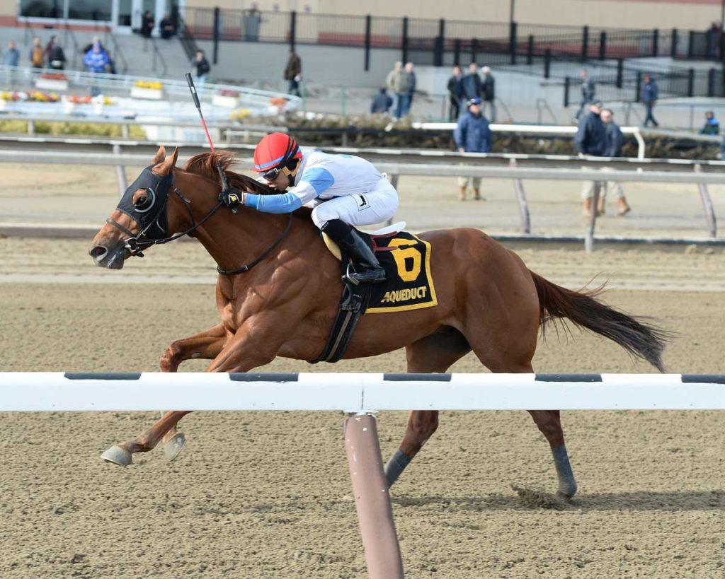 Governor Malibu Belmont Stakes 2016