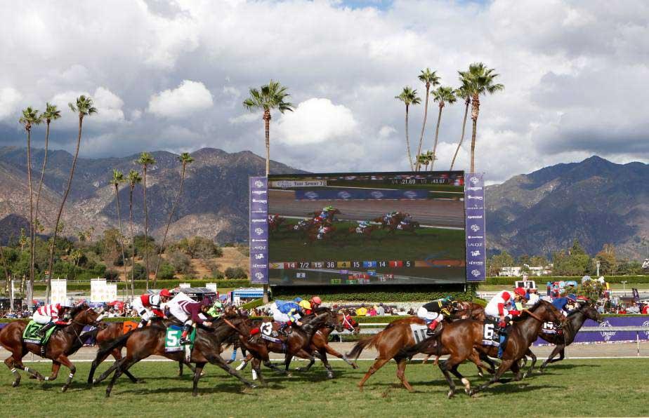 Why Is Santa Anita A Solid Breeders Cup Venue