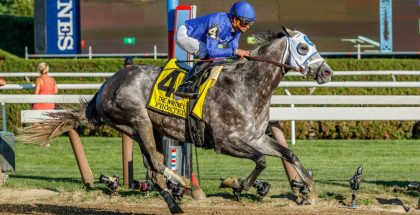 Frosted Whitney 2016