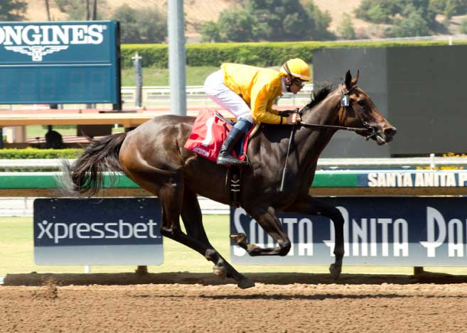 Bendable Can End Enola Gray S Streak In Beverly J Lewis