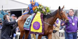 Found Breeders' Cup 2016