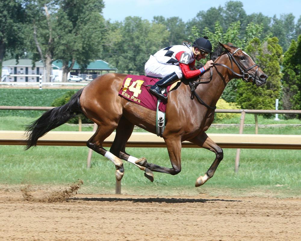Pocahontas Stakes 2016