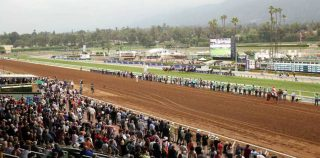 Oscar Performance Shows Winning Ways in Breeders' Cup Juvenile Turf