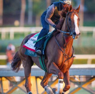 California Chrome Nears End in Awesome Again Stakes