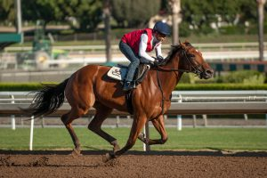 Champagne Room works for the Breeders' Cup Juvenile Fillies under Mike Smith at Santa Anita 10/21/16