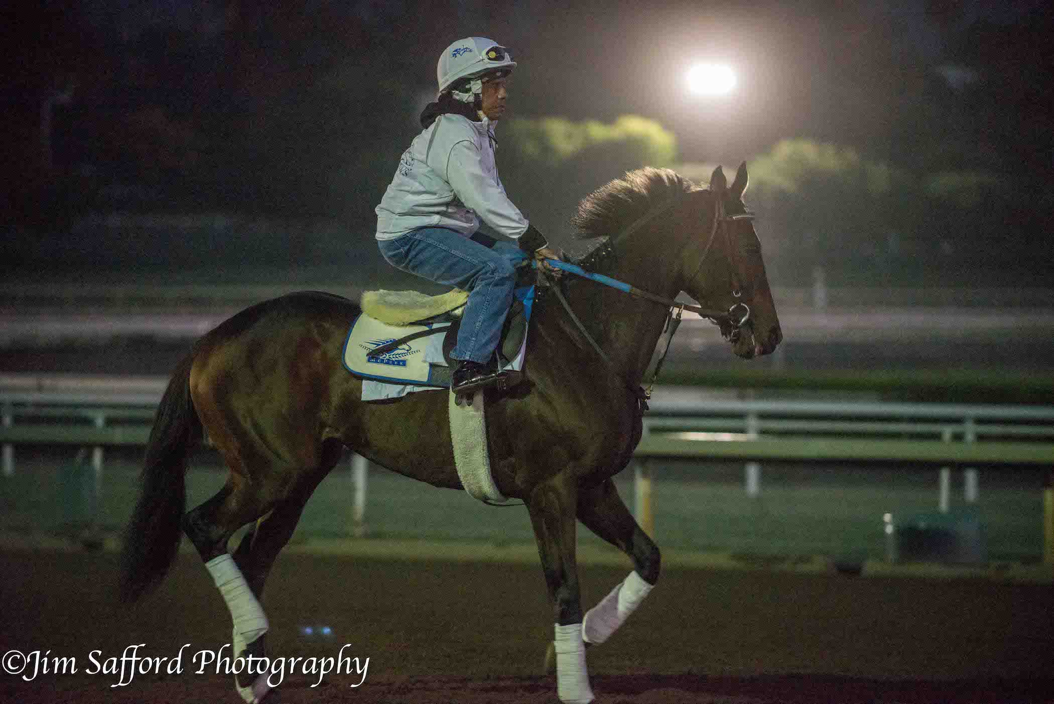 Breeders Cup Juvenile Fillies Loaded With Talent Lady