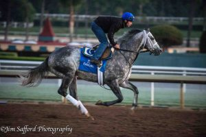 Frosted 10/25/16
