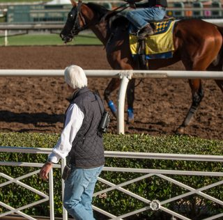 Busy Couple of Days at Santa Anita for Breeders' Cup-Bound Runners
