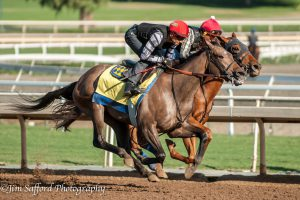 Noted and Quoted, Bejarano aboard, 10/25/16