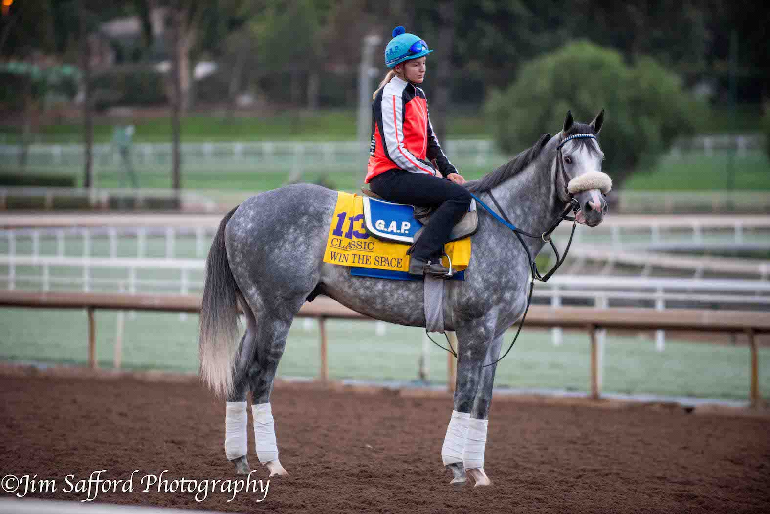 2016 Breeders Cup Mornings At Santa Anita Lady And The