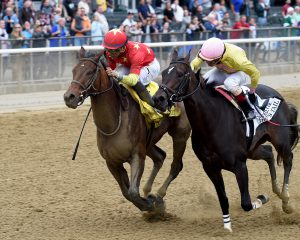 Yellow Agate (left) winning the Frizette (GI). Photo: NYRA/Chelsea Durand