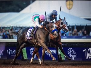Juddmonte Farms' Arrogate just gets past California Chrome to win the 33rd Breeders' Cup Classic (GI) at Santa Anita on November 5, 2016. Photo: Jim Safford