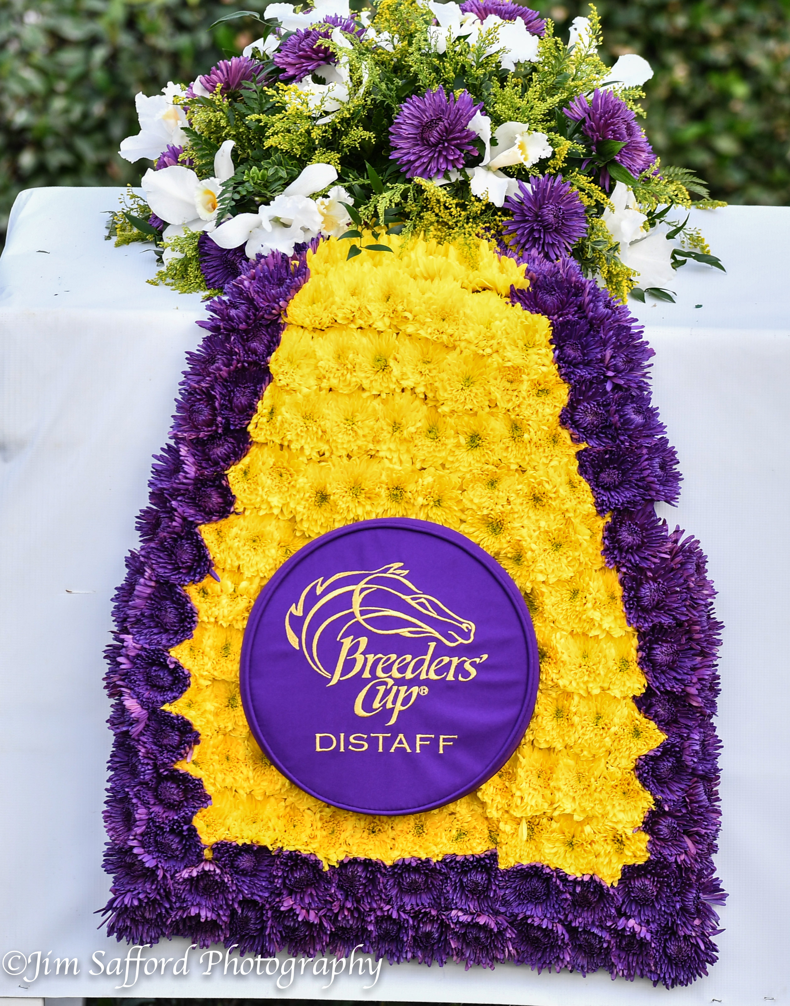 2019 Breeders Cup Post Times And Wagering Menu Lady And