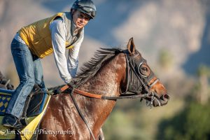 Mastery and Mike Smith. Santa Anita 11/30/16