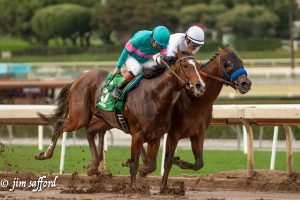 Gormley and jockey Victor Espinoza duel with American Anthem in Sham Sakes (GIII) at Santa Anita 1/7/17. Photo: Jim Safford