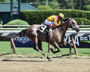 Fact Finding set to contest the 2017 Sam F. Davis Stakes (GIII) at Tampa Bay Downs. Photo: NYRA
